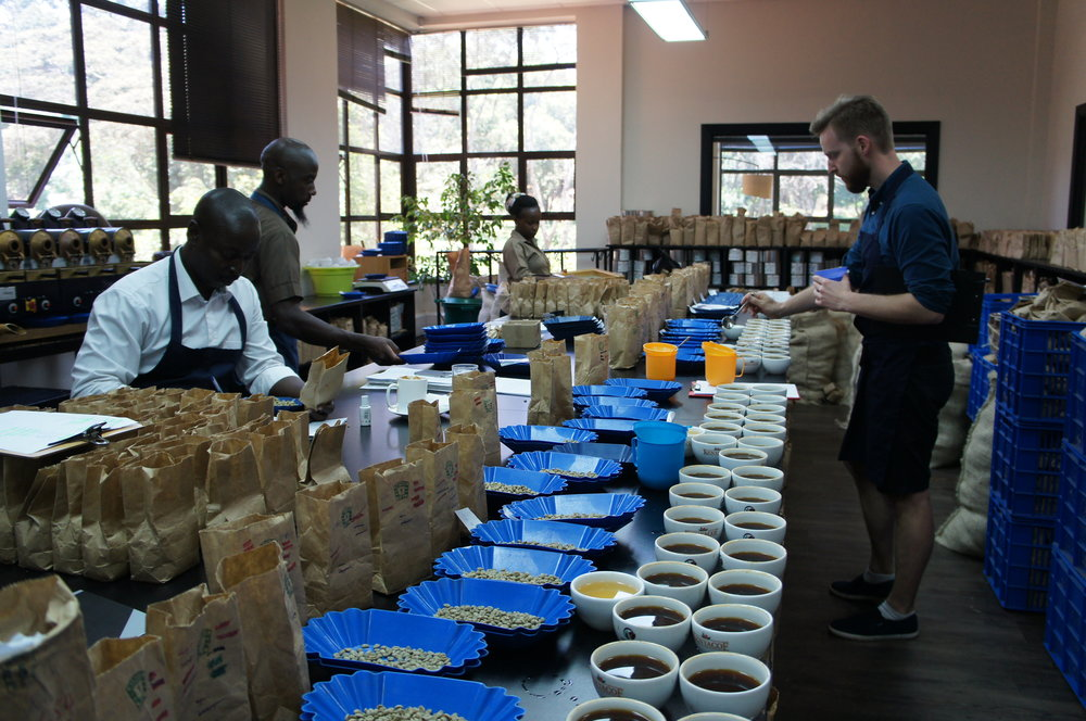 Kaffebrenner og eier Joakim Strand på cupping i Kenya i 2017