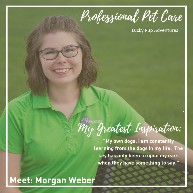 Saturday Spotlight - Morgan Weber.png