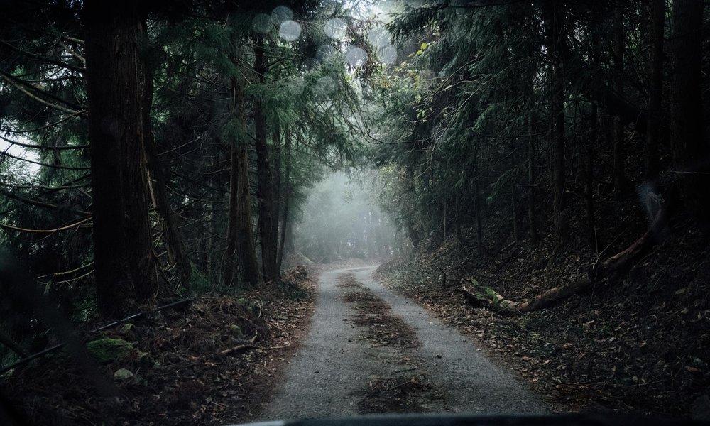 莎瓏、馬躍/劃一條「回家的路」──了解原住民傳統領域的16題問答