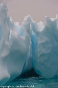 Antarctica-0121.jpg