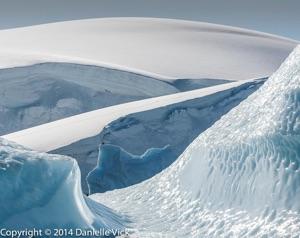 Antarctica-0124.jpg