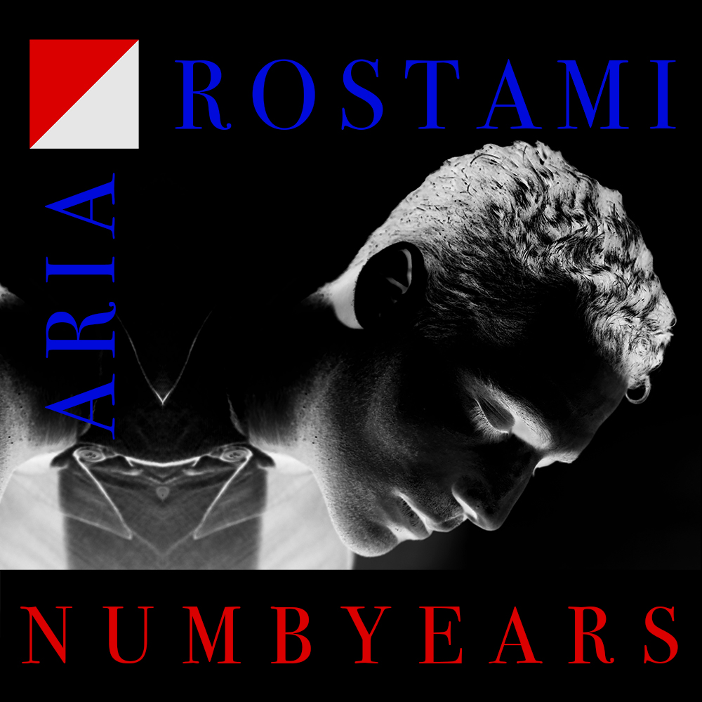 Aria Rostami  Numb Years - Intimate Inanimate (2017)   Album cover by Brian Vu  and Aria Rostami