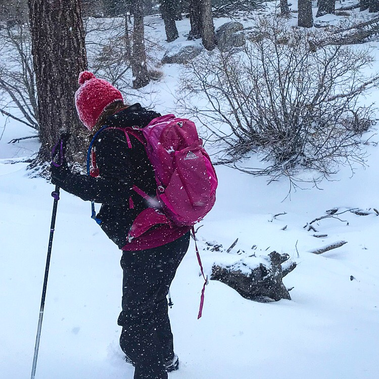 Falling snow in San Jacinto. Base layers: The North Face fleece leggings. Mid layers: Nike Dri-Fit long sleeve shirt, The North Face fleece zip, Patagonia Nano Puff jacket. Outer layers: Marmot shell and rain pants. Trail crampons by Hilsound. Temperature: 20 degrees.