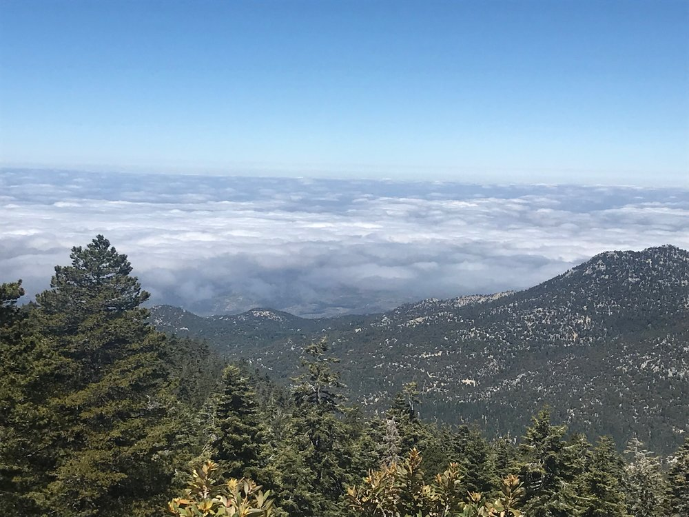 Views from the San Jacinto Summit.