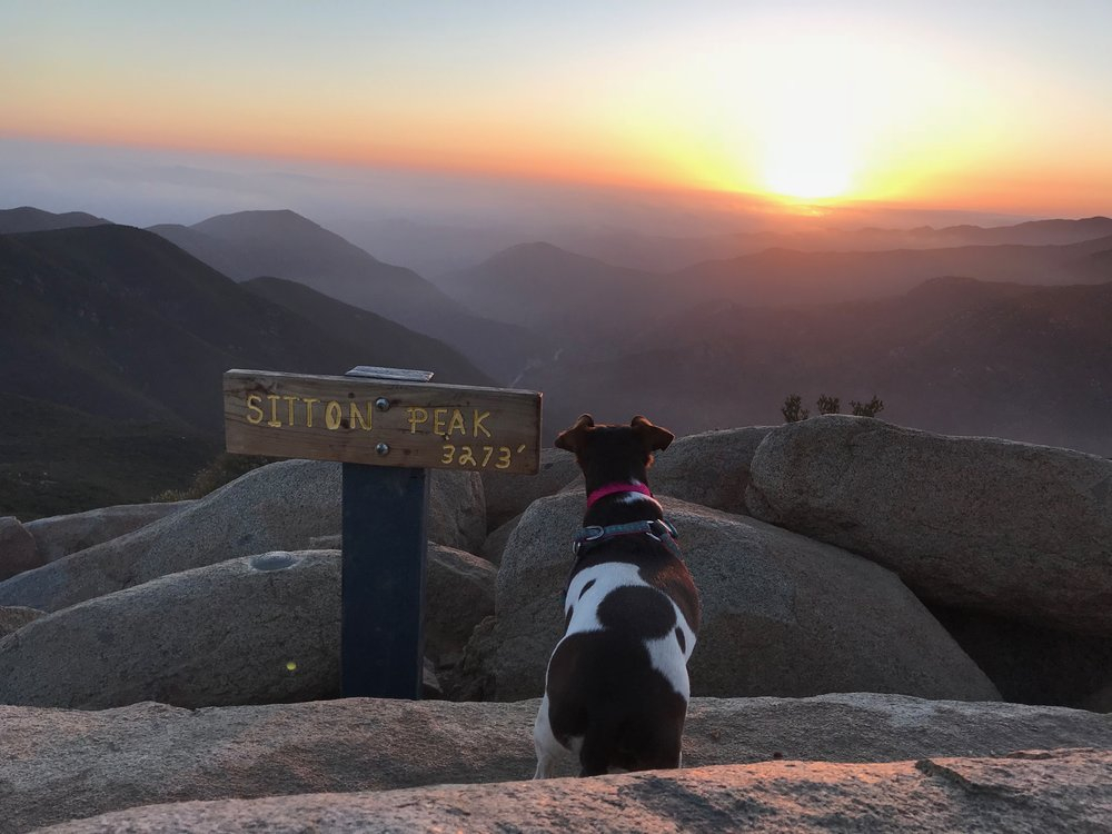 Mountain layers, sunsets and sweet moments with my pup.