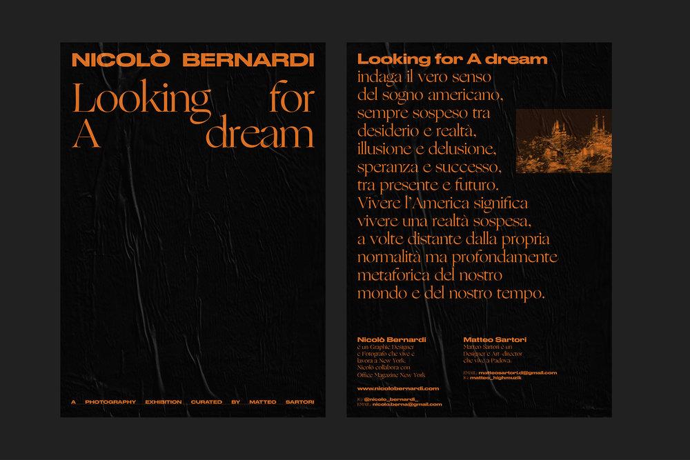 Lookingforadream-presentazione progetto2.jpg