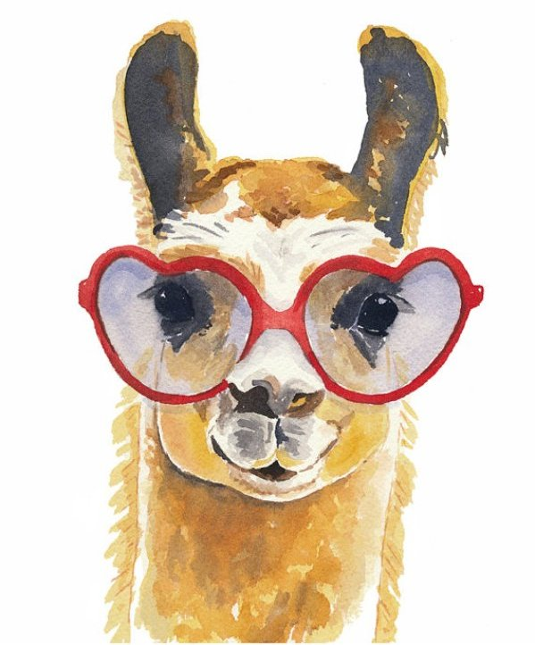 Llama with lenses