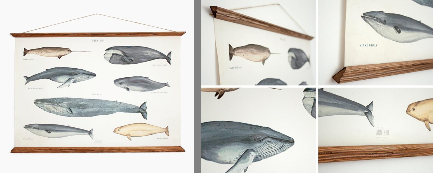 Whales by Arminho Creative Studio