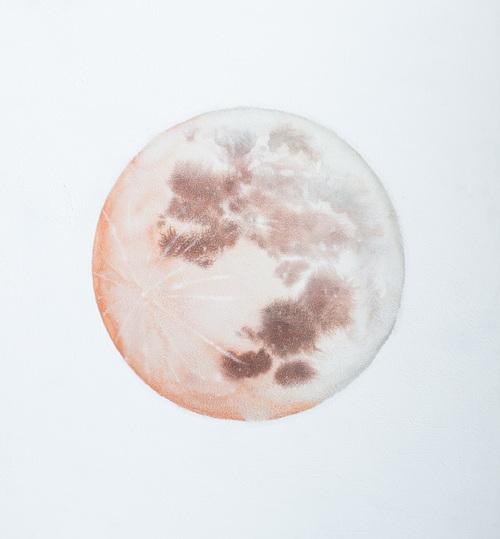 Selenelion Moon - Stella Maria Baer