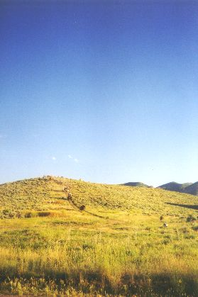 Made July 22, 1997 just north of East Canyon Reservoir, East Canyon, Utah - Formidable Hill.  Photograph by Steve Berlin.  This steep hill leads directly off the high flat where the company had camped the night and onto the highway which would be used to skirt East Canyon Reservoir. The handcart company had some trouble on the hill holding back their heavy conveyances but all made the descent without incident. Not so the wagons. After one narrowly-averted runaway and finally the out-of-control bolt of a mule-drawn wagon, which resulted in minor injuries to its driver and occupants and the destruction of the wagon, this route was abandoned. The remainder of the company took a longer but more gentle route to the highway.