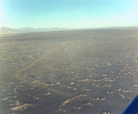 "12. Made 1971, Great Salt Lake Desert, Utah. The Big Bend from the Air.   Photograph: Copyright © 1971 Roy D. Tea.   Here, 12± miles southeast of Floating Island, the trail takes a sharp turn to the right, or northwest, before bearing left again toward Pilot Peak. The mountain does not appear in this photograph, it lies south of the camera's view, but faintly seen on the distant skyline is the northern extent of the Pilot Peak range. Firmer ground to the north made it possible for the pioneers to correct their line of travel here. Numerous small shortcuts across this ""Big Bend"" are visible on close observation. The bend is very prominent on commercial aerial photographs made for survey and documentation purposes before parts of the trail were flooded in 1987-89. The flooding occurred as huge pumps moved 1.5 million gallons of water per minute around the clock from the Great Salt Lake onto the area generally north of here to alleviate flooding around the lake's shoreline from several years' unusually heavy precipitation."