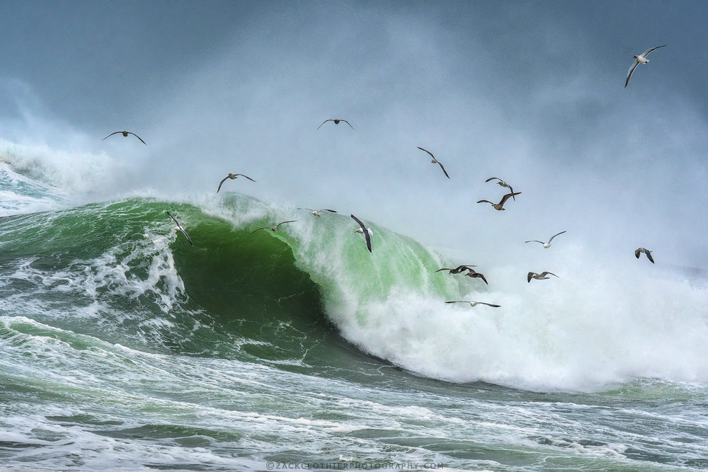 """""""PACIFIC SWELL"""""""