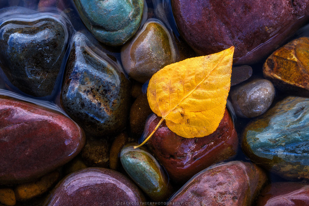 Abstracts In Nature -