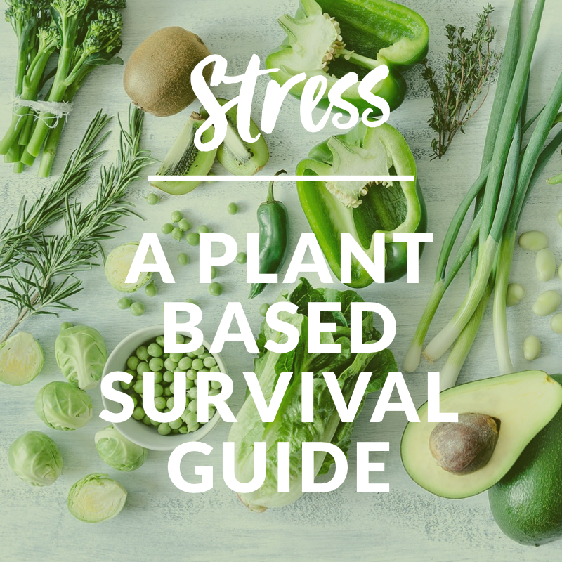 Indoor plants survival guide: adrienne wild: 9781552675366: amazon.