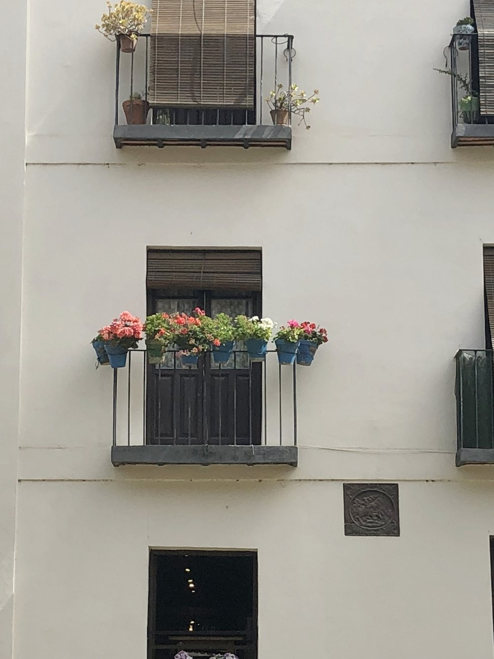 I'm a big fan of the blue flower pots all over Spain and Greece :)