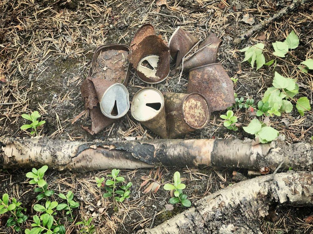 Vanhan laavupaikan tölkit ja maastopalossa hiillostunut koivu kertovat omaa tarinaansa.