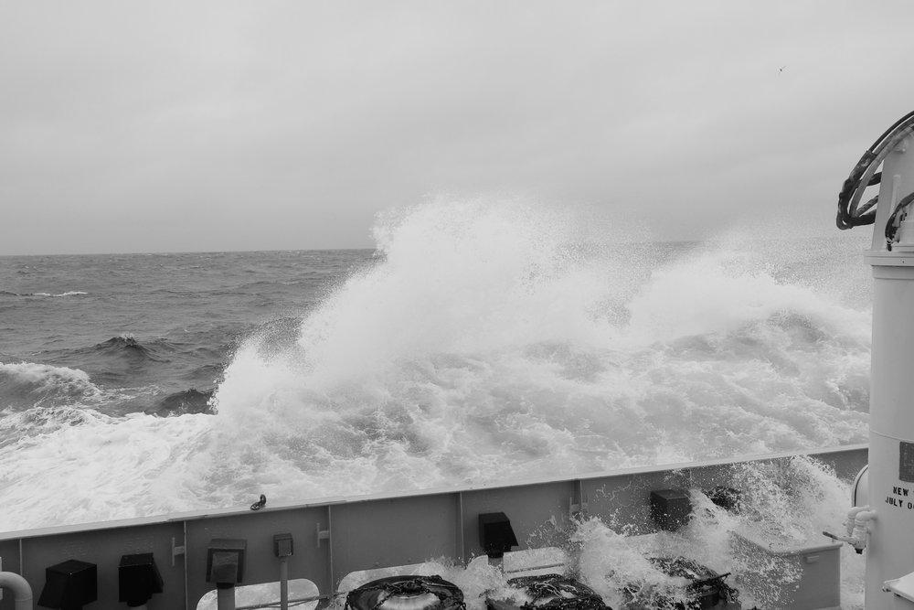 Drake Passage, Southern Ocean | Photo Credit: Jack Pan