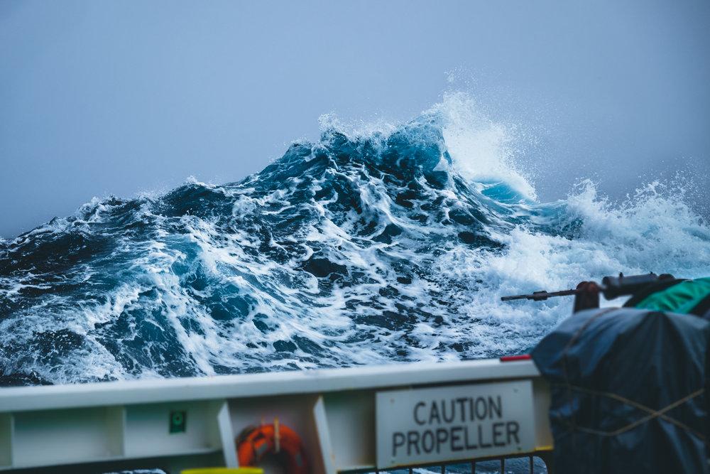 Ocean Motion - SAN Diego