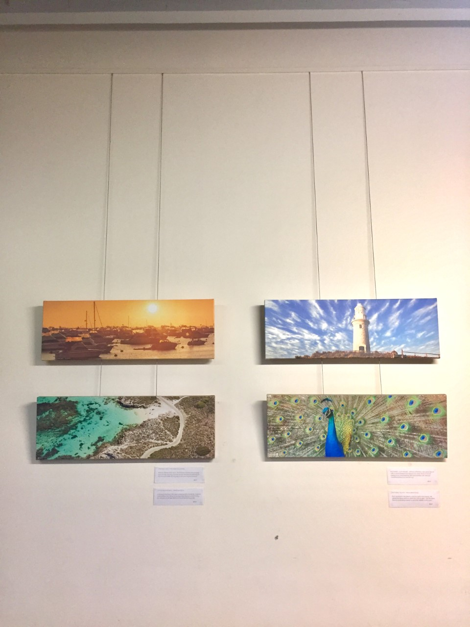 A selection of smaller prints hanging.