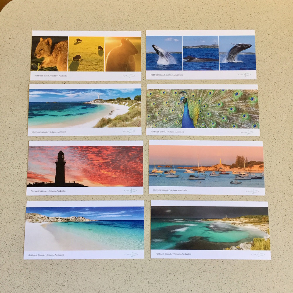 Panoramic DL sized cards.