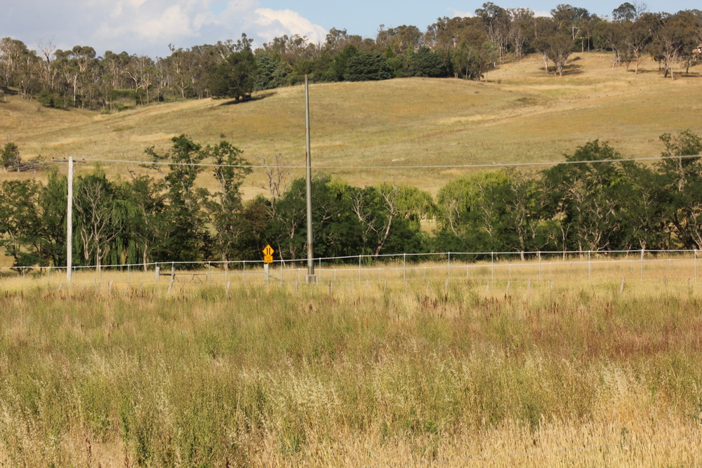 Looking north-east towards Dumaresq Creek near Cookes Rd, Armidale