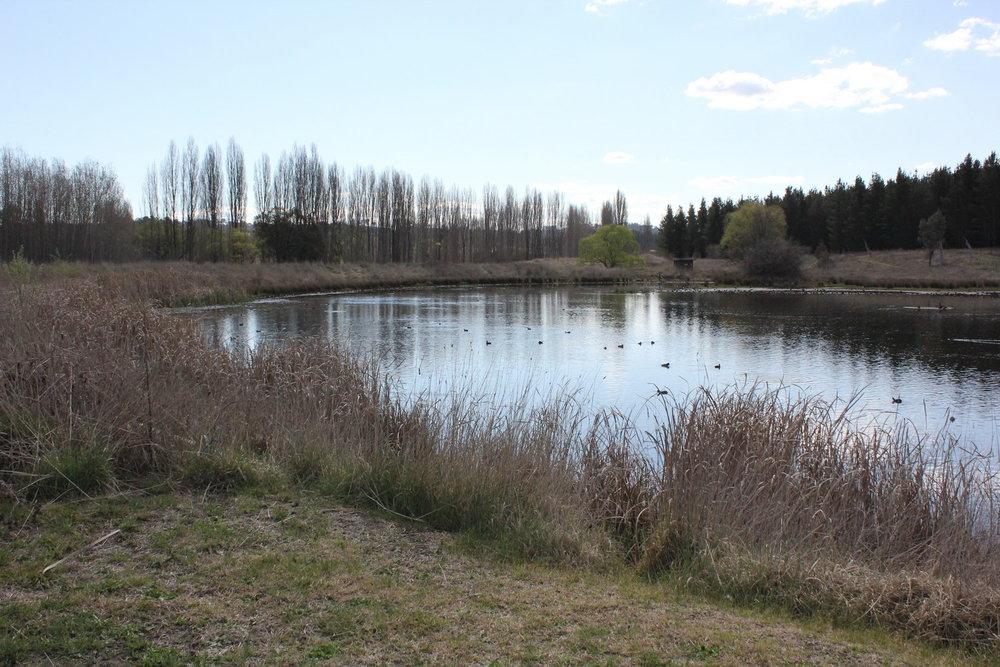Lake Zot