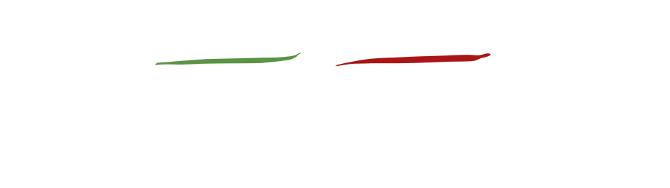 logoFI2.png