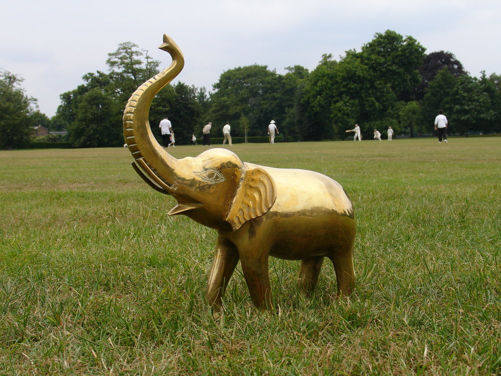 Cricket elephant.JPG