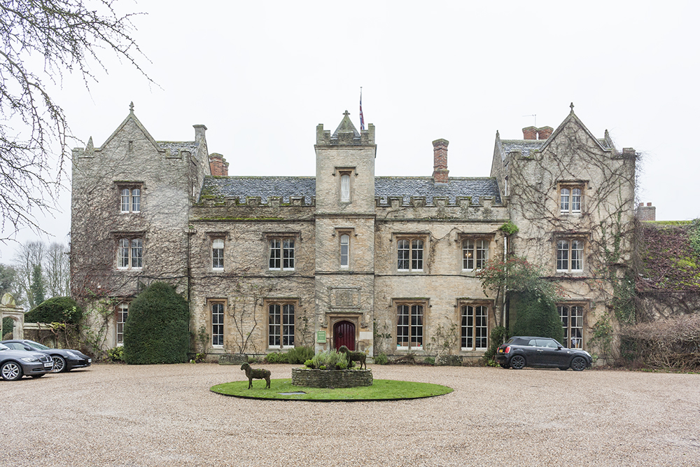 The Manor.jpg
