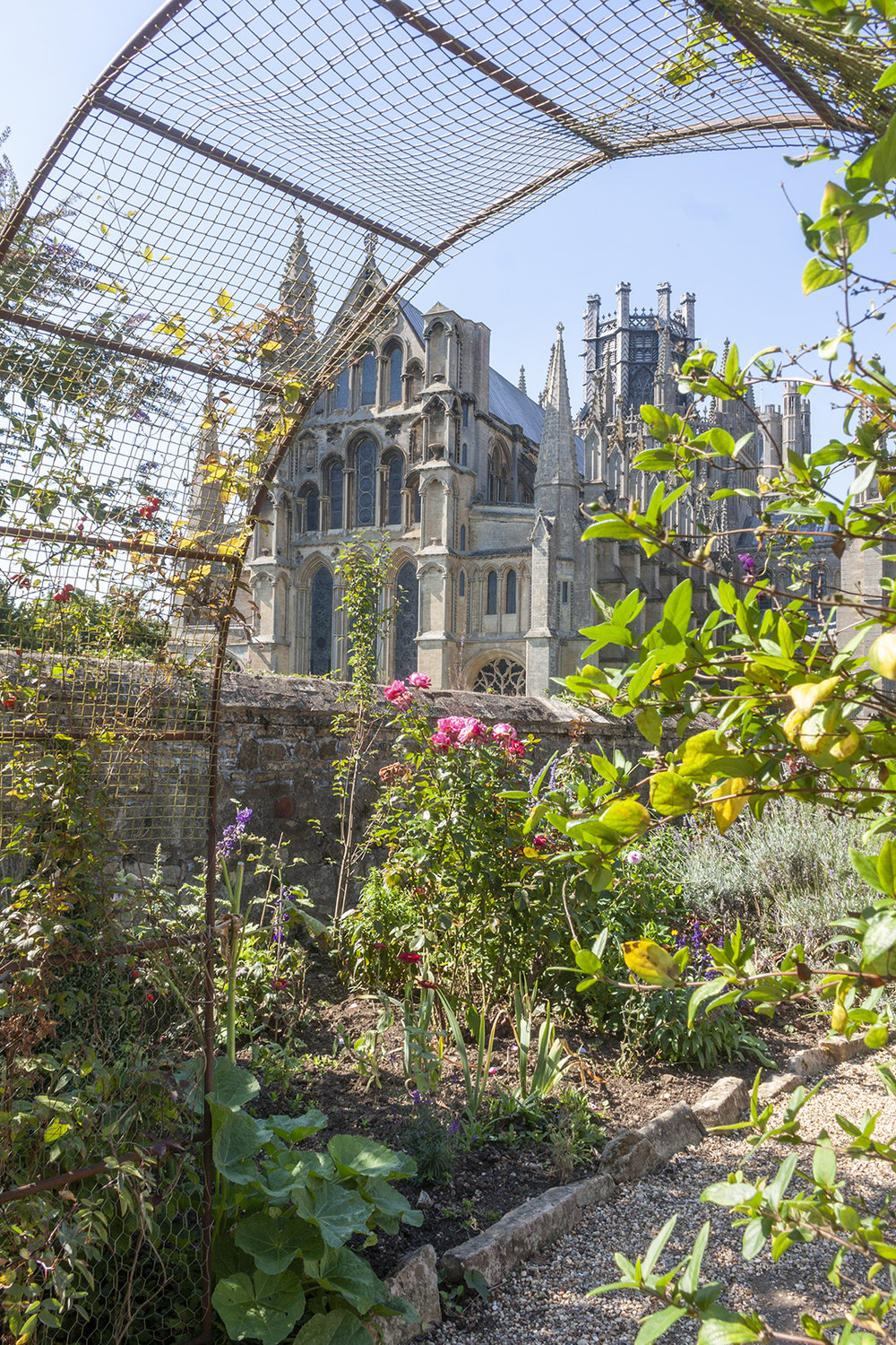 ely cathedral garden.jpg