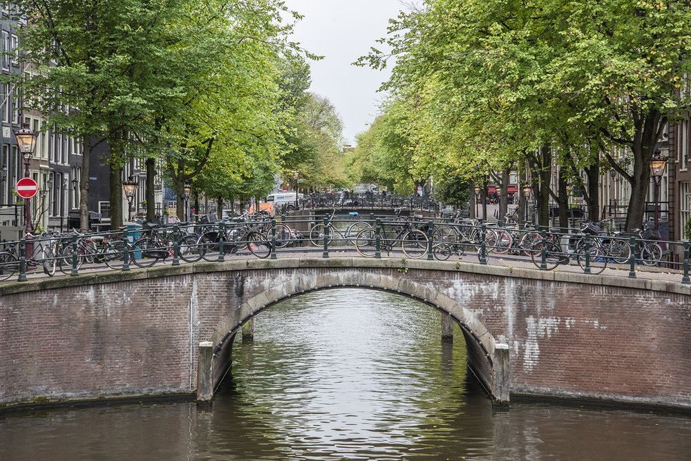 The Vanguard, Amsterdam