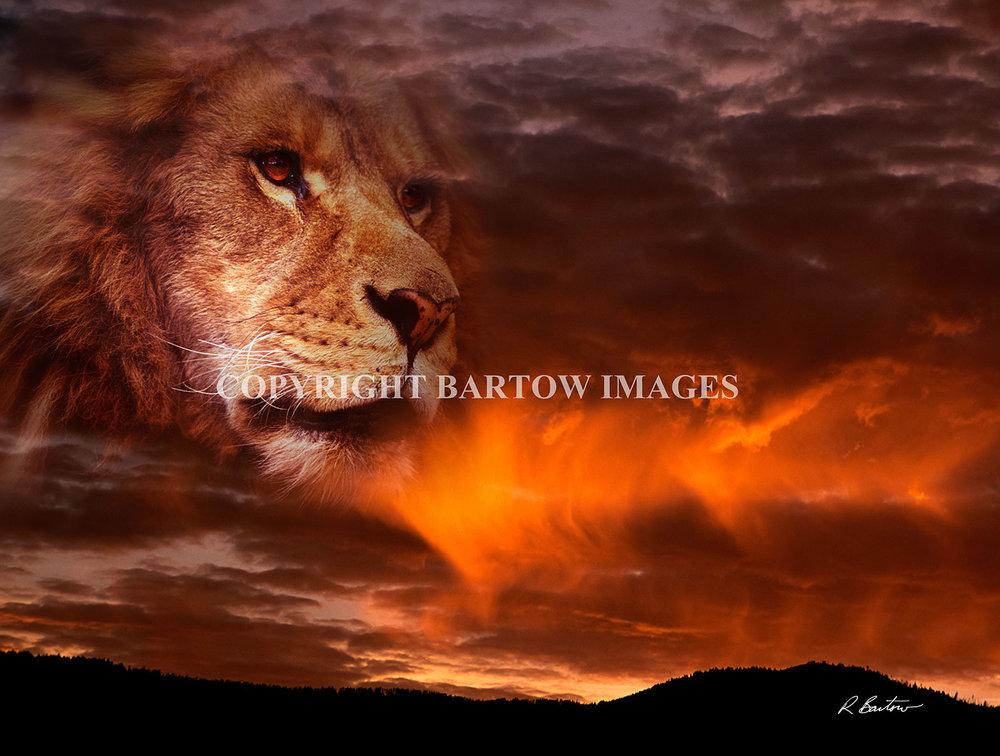Reign-of-Fire-Full.jpg