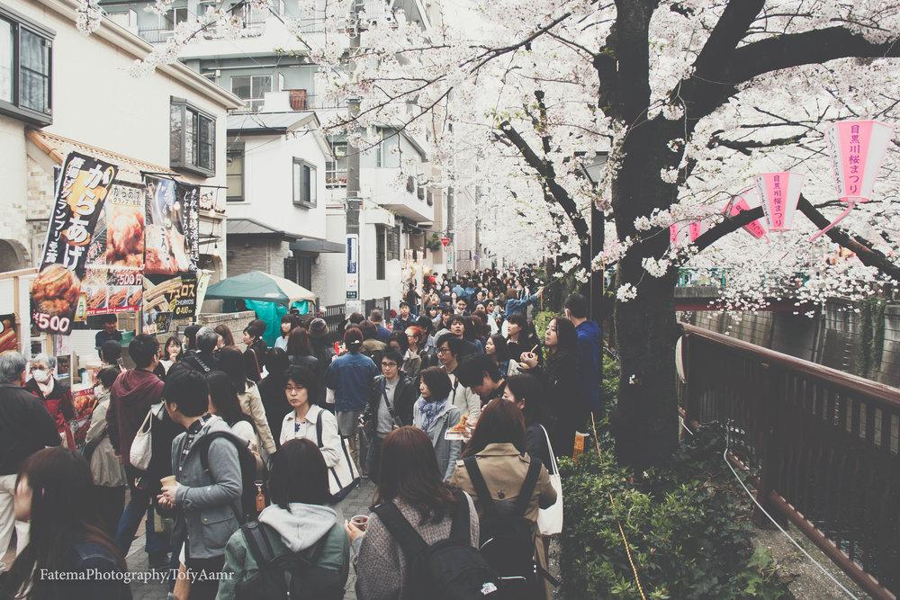 Crowed Meguro River