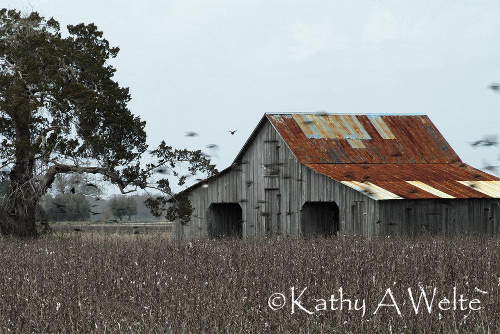 cotton-barn