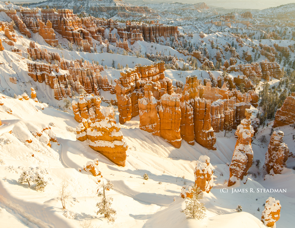 just-after-dawn-in-bryce