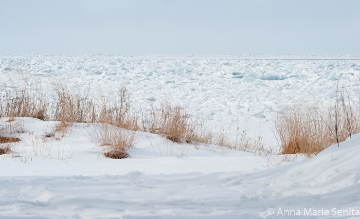 Lake Erie Ice_AMSenita_27156.jpg