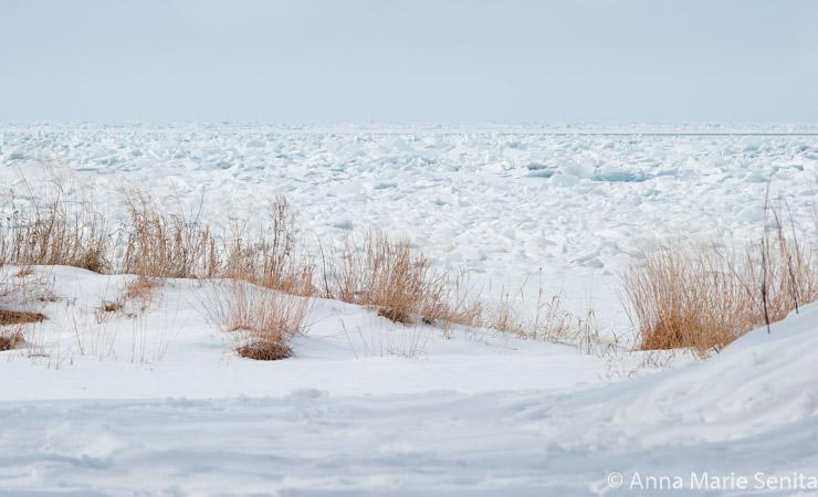 Lake Erie Ice_AMSenita_27156.jpg