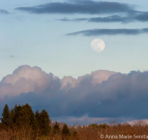 Moonrise_AMSenita_05420s.jpg
