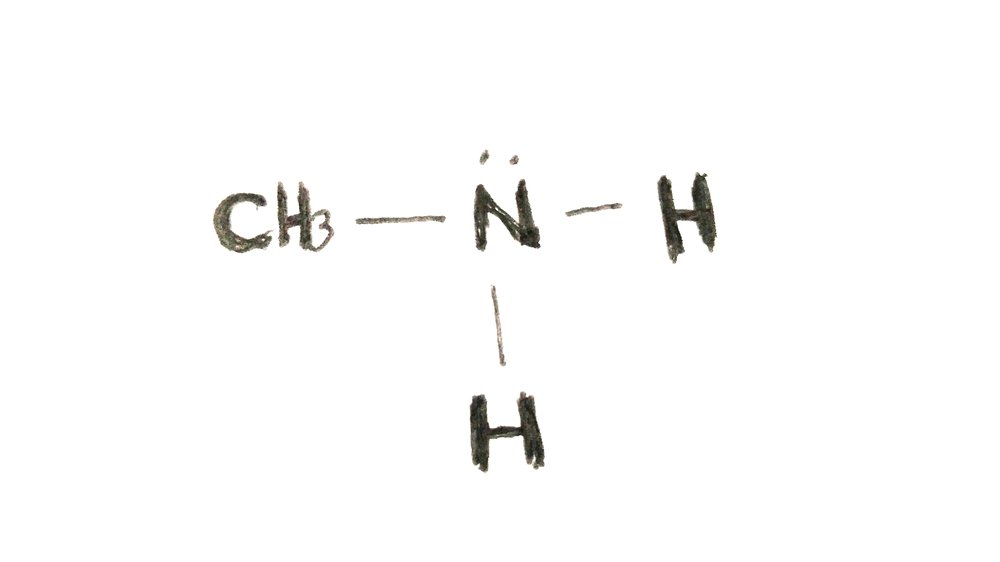 """What does """"vitamin"""" actually mean? - The term """"vitamin"""" is short for """"vital amine,"""" and was coined by the Polish chemist who assumed all nutrients were based off of amines.What is an amine, you say? It's a type of molecule derived from ammonia, and is made of nitrogen, a lone pair of valence electrons, and one or more substituents that replace the typical hydrogen atoms. This image is a methyl amine.Some vitamins are amine-based, while others aren't. The term now refers to organic (carbon-based) nutrients needed in tiny amounts for human growth and function."""