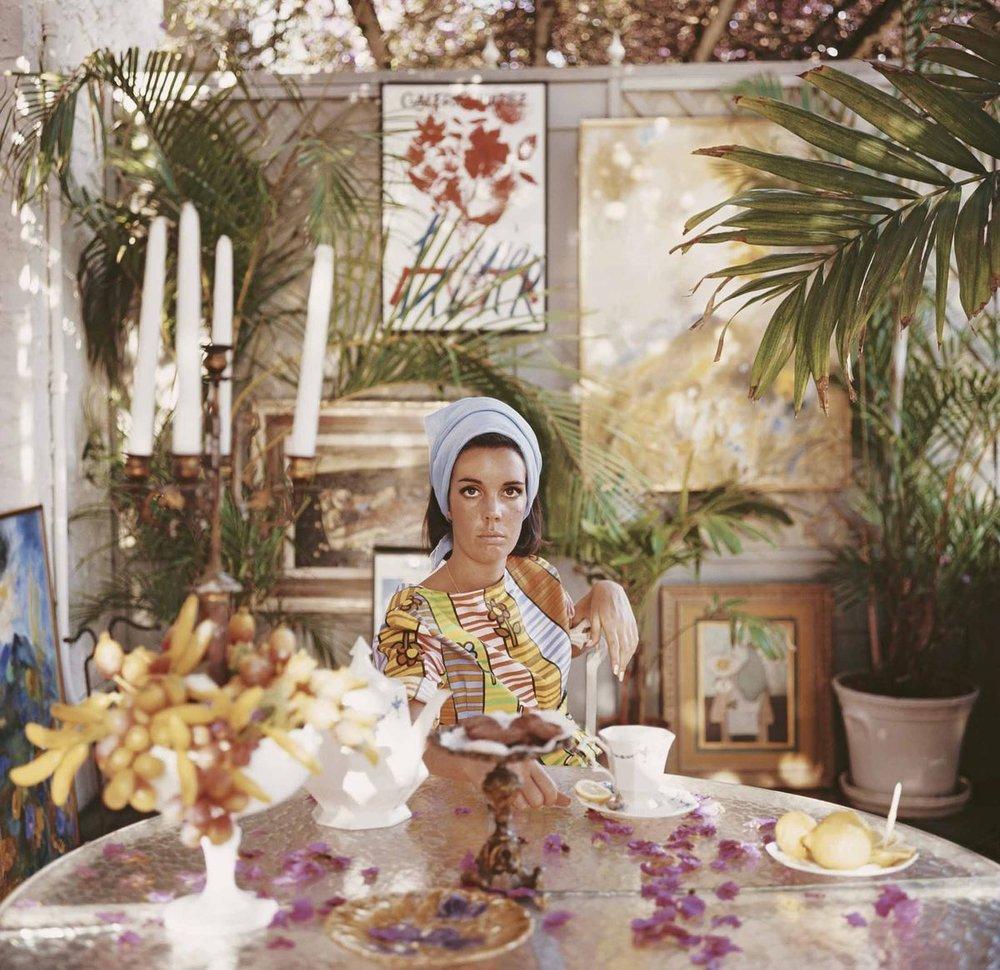 Wendy Vanderbilt Lehman.jpg
