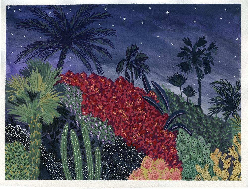 Midnight_Marrakech.jpg