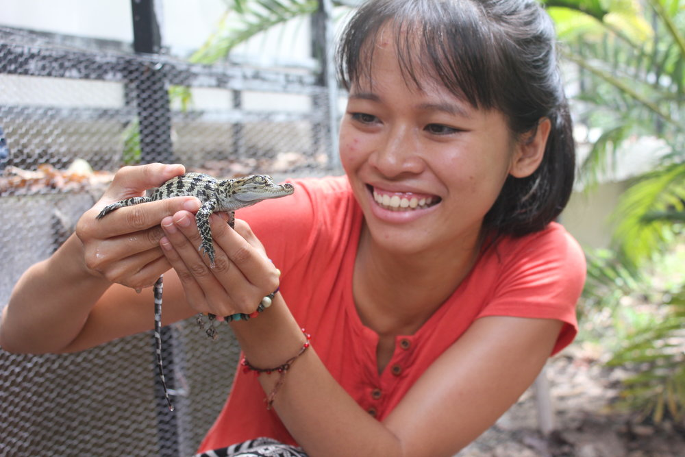 TrangNguyen with a newly hatched Siamese crocodile.JPG