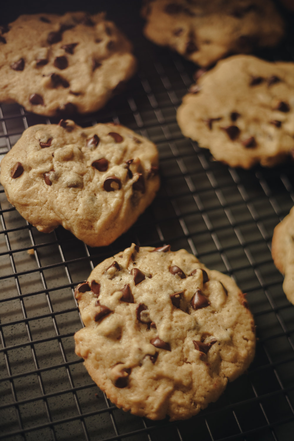 Soft Chewy Chocolate Chip Cookie Recipe 4