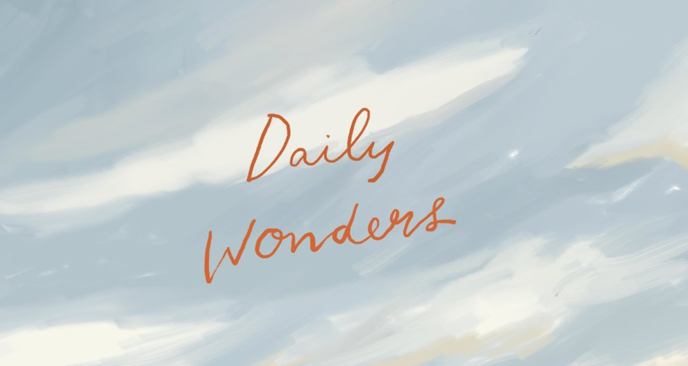 small_wonders-banner-squarespace.jpg