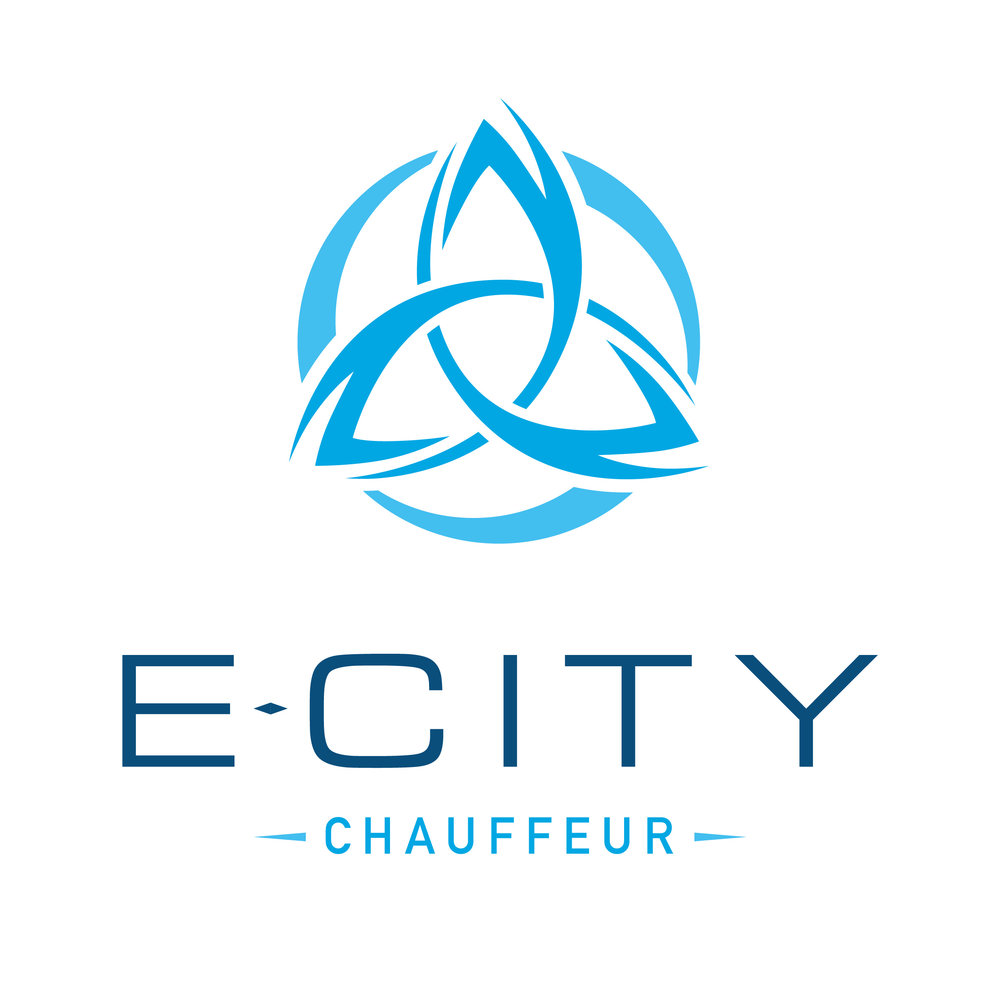 E-City LIGHT Logo - Social Media-01.jpg