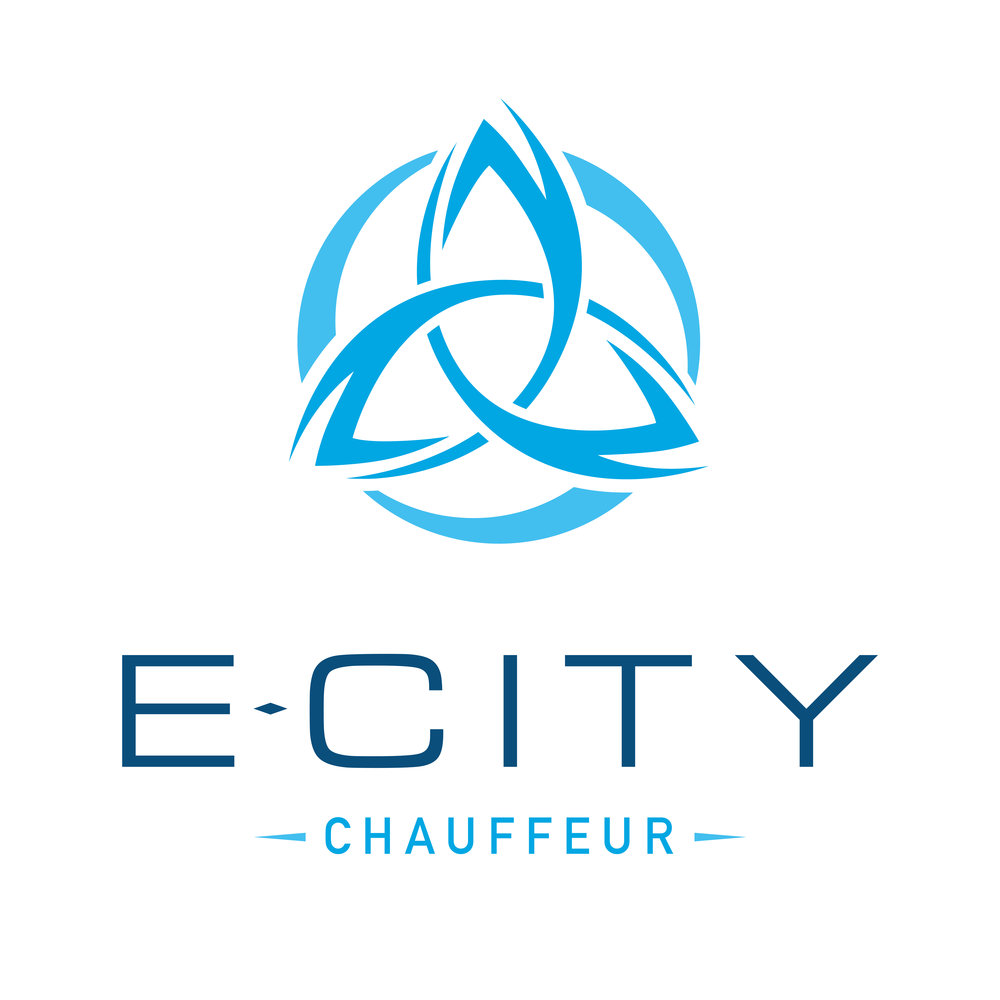 E-City Logo LIGHT - High Res-01.jpg