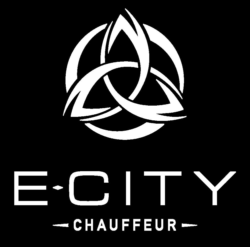E-City-Web-Logo-Large.png