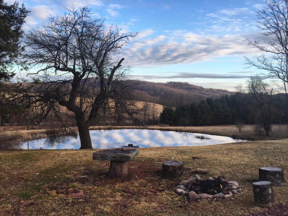 Pond Mirror.jpg