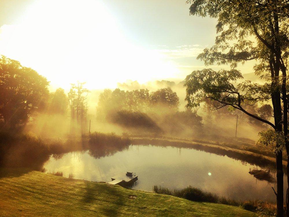 Pond Morning Mist.JPG