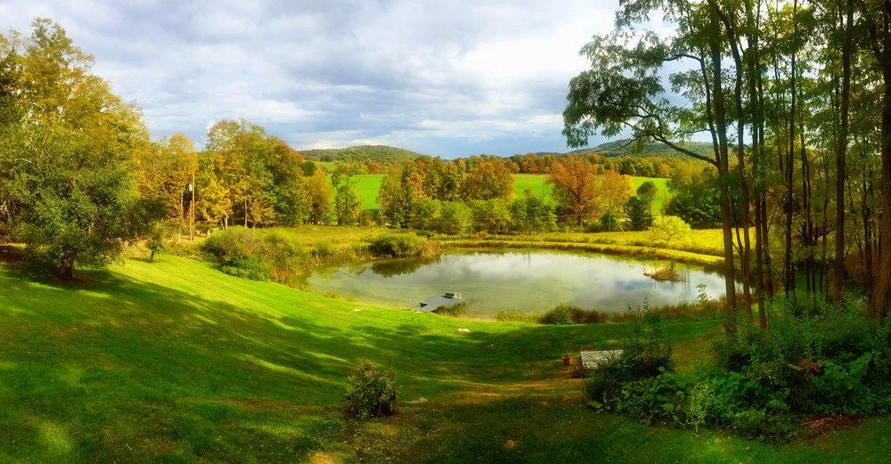 Pond Wide.JPG